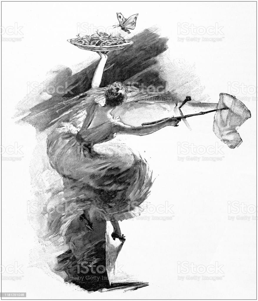 アンティークイラスト蝶を捕まえる - 19世紀のベクターアート素材や ...