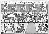istock Antique illustration: Egyptian farmers hieroglyph 1307556484