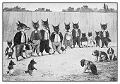 Antique illustration: Foxes and dogs