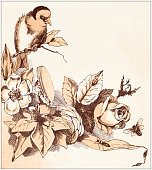 Antique illustration from fables picture book: Tom Thumb