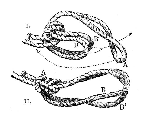 Antique illustration from mountaineering book: Bowline on a bight vector art illustration