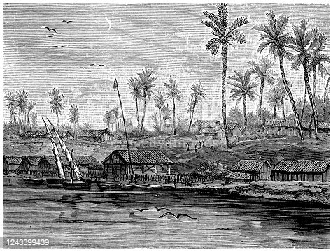 Antique illustration: German farm in Guinea