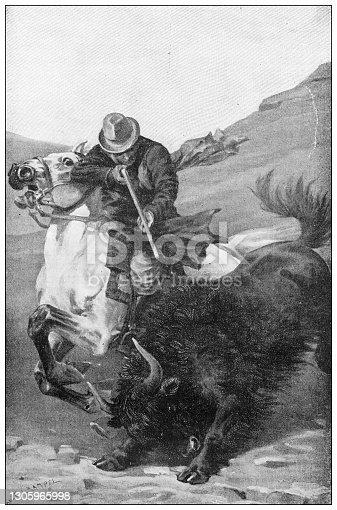 istock Antique illustration: Killing a bison 1305965998