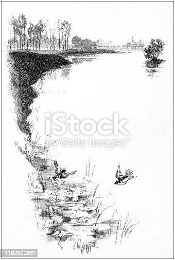 Antique illustration: Lake copy space