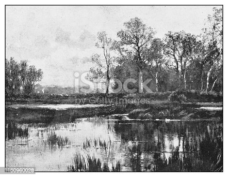 Antique illustration: Lake landscape