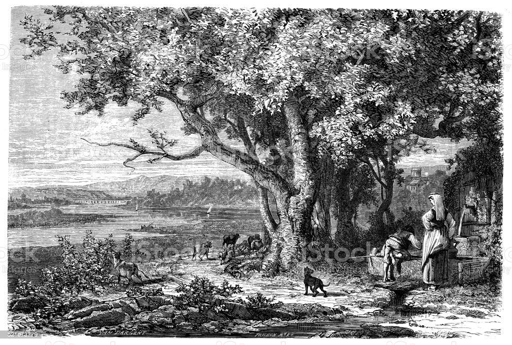 Antique illustration of Arno river vector art illustration