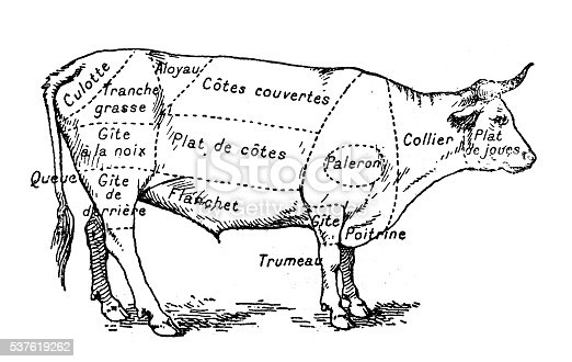 istock Antique illustration of beef meat section (french) 537619262