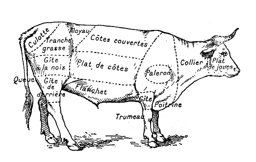 Antique illustration of beef meat section (french)
