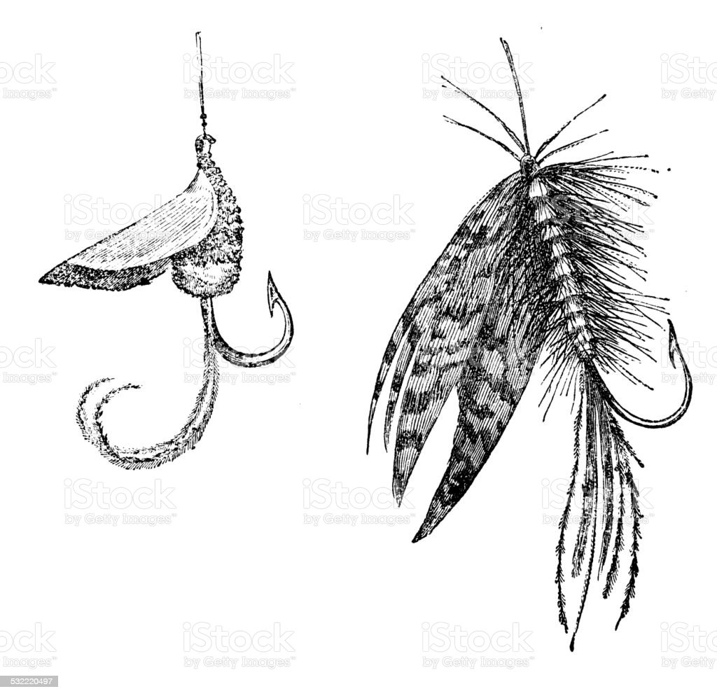 Antique illustration of fake insect bait vector art illustration