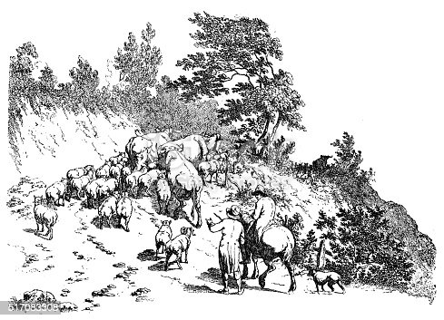 Antique illustration of flock climbing uphill. Two shepherds  lead a mixed flock with sheep, bovines, goats.Engraving by Robert Hills (18th-19th century English painter and etcher)
