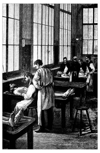 antique illustration of french civilian and military schools: medicine autopsy section room - autopsy stock illustrations, clip art, cartoons, & icons