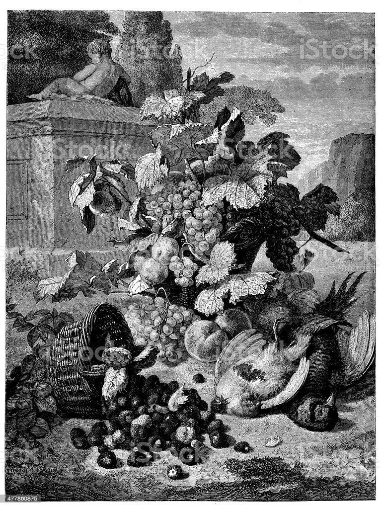 Antique illustration of fruit and birds vector art illustration