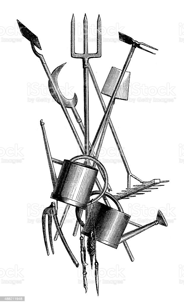Antique illustration of garden tools vector art illustration