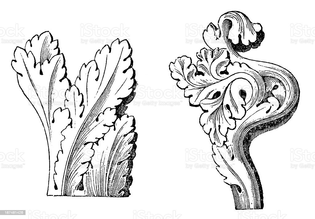 Antique illustration of Gothic Acanthus (ornament) vector art illustration