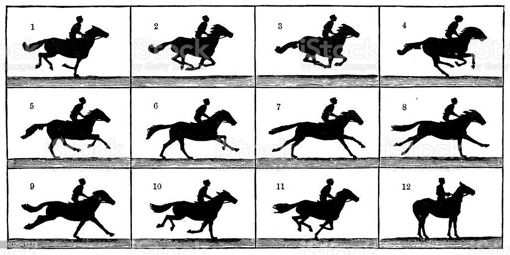 Antique illustration of horse in motion vector art illustration