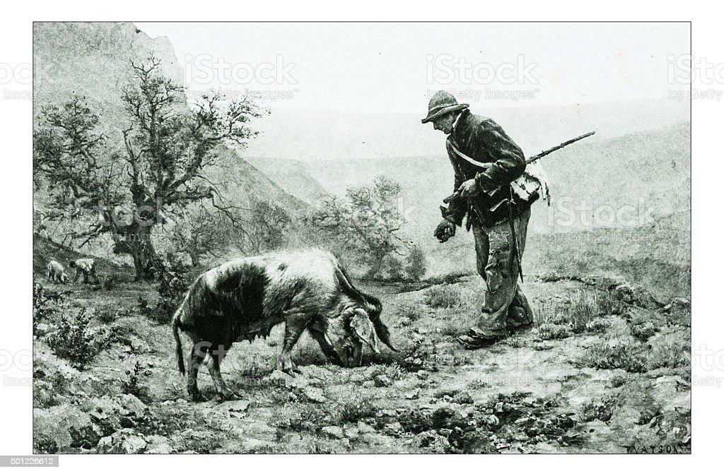 Antique illustration of 'Les chercheurs de truffes' by Vayson vector art illustration
