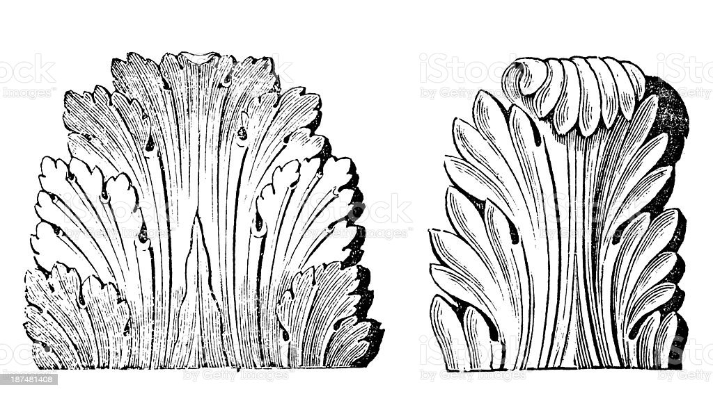 Antique illustration of Roman Acanthus (ornament) vector art illustration