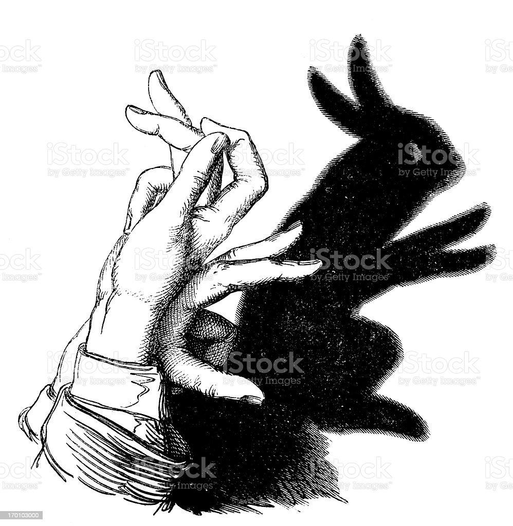 Antique illustration of Shadowgraphy: rabbit vector art illustration