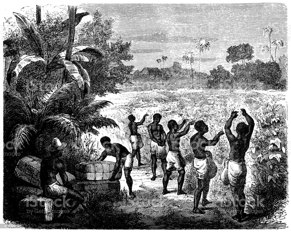 the views and lifestyles of slaves during What is modern slavery and what forms of slavery exist today slavery is also more likely to occur where the rule of law is weaker and corruption is rife it can also happen to groups of people who are not protected by the law, for example migrants whose visa status is irregular are easy to blackmail.