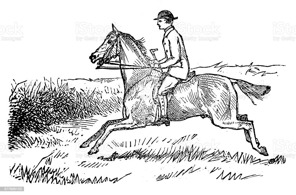 Antique Illustration Of Sports And Exercises Horseback Riding Stock Illustration Download Image Now Istock