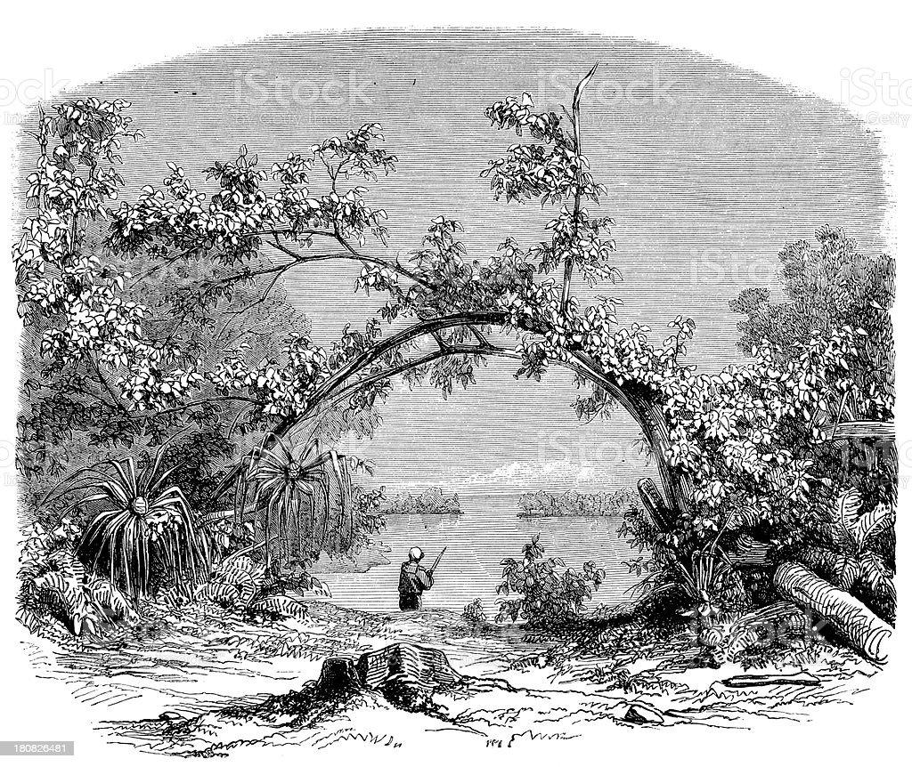 Antique illustration of Tahiti scene vector art illustration