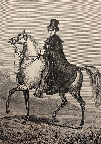 Antique illustration - Prince Albert wearing a tophat riding a white horse - Prince Albert as field Marshall