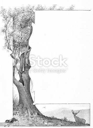 istock Antique illustration: Tree nature frame decoration 1182621413