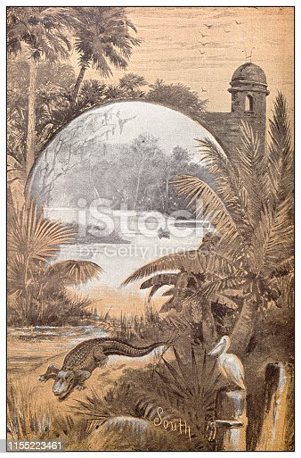 Antique image: Southern USA landscape