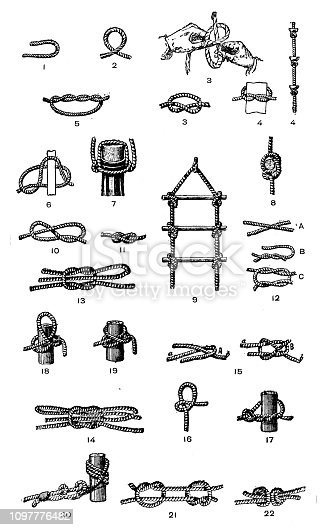 Antique old French engraving illustration: Knots