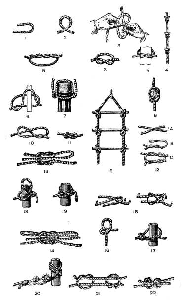 Antique old French engraving illustration: Knots Antique old French engraving illustration: Knots knotted wood stock illustrations