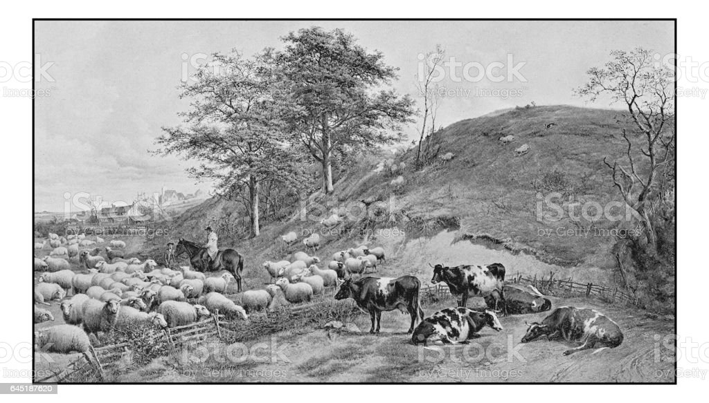 Antique photo of paintings: Landscape vector art illustration