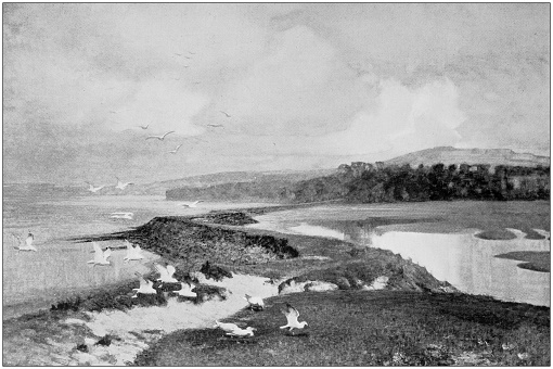 Antique dotprinted photo of paintings: Landscape