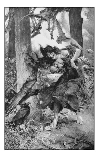 illustrazioni stock, clip art, cartoni animati e icone di tendenza di antique photo of paintings: witch - woman portrait forest
