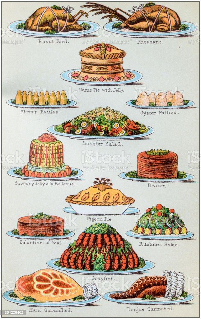 Antique recipes book engraving illustration: Supper dishes vector art illustration