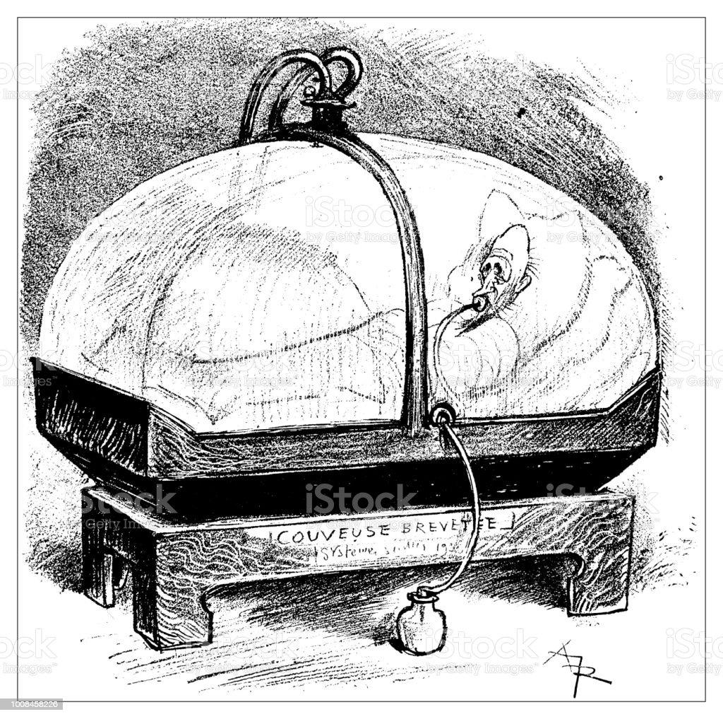 Ilustración de Antigua Ilustración Científica Grabado Hombre En ...