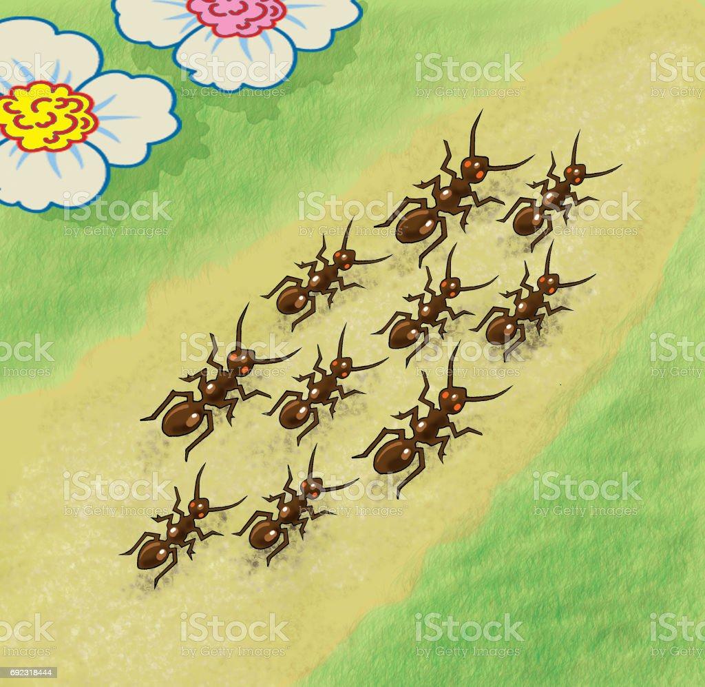 Ants walking along the path - jpg illustration vector art illustration