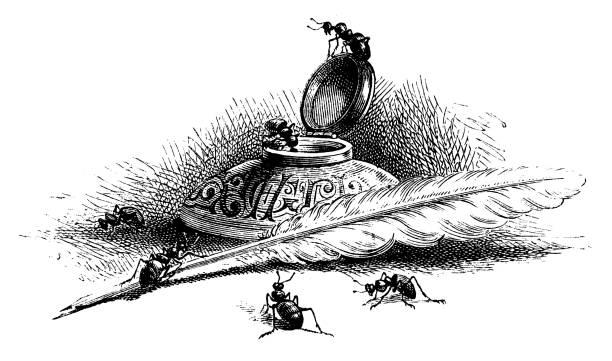 ilustrações de stock, clip art, desenhos animados e ícones de ants with quill pen and ink well - tinteiro