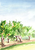 Apple garden in perspective. Hand drawn watercolor vertical background