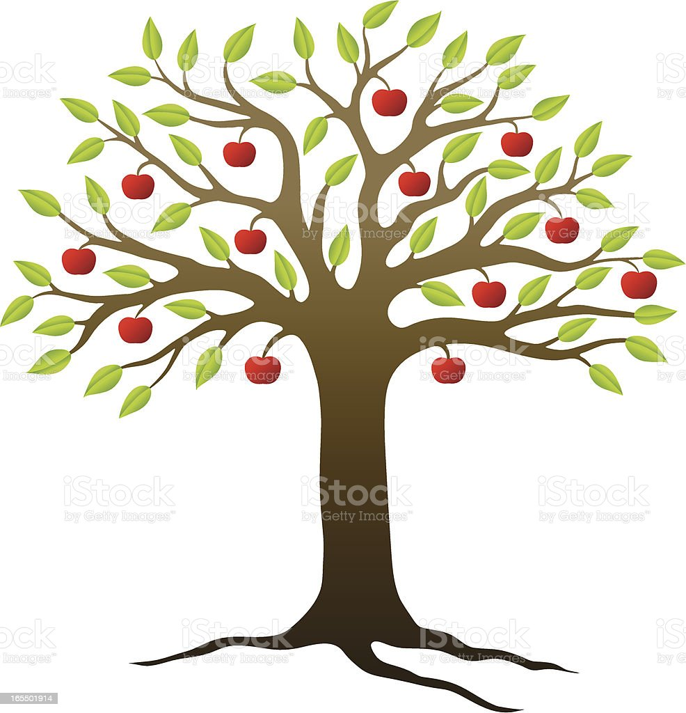 apple tree stock vector art more images of apple fruit 165501914 rh istockphoto com