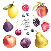 Apples, pears, peach, raspberry, blueberry, strawberry, fig, plum, cherry hand drawn set. Colorful watercolor isolated fruit.