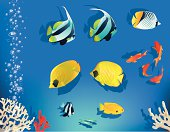 The vector illustratin of set of coral fishes for decoration in aquarium style.