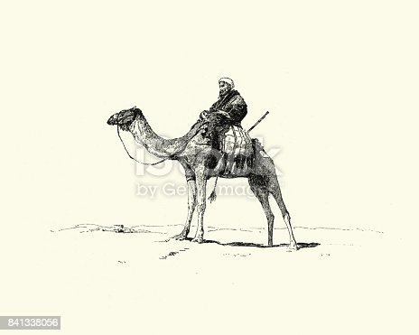 Vintage engraving of a Arab riding a camel, 19th Century