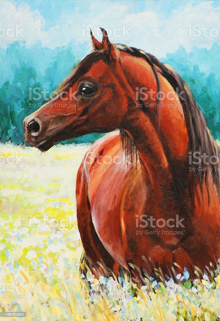 Arabian horse vector art illustration