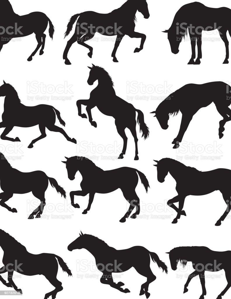 Arabian Horse Silhouette Stock Illustration Download Image Now Istock