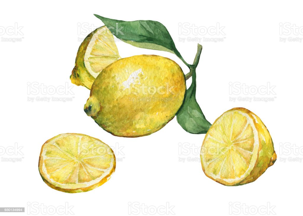 Arrangement With Whole And Slice Fresh Citrus Fruit Lemon With Green