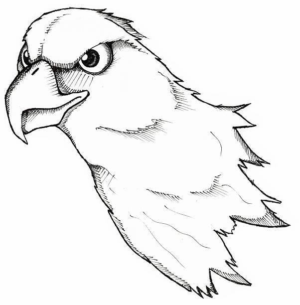 Art - EagleHead vector art illustration