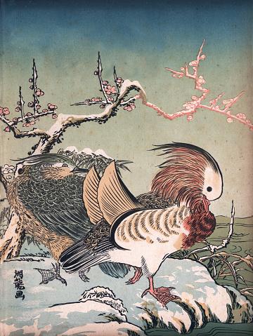 Art of Japan, Mandarin ducks (Aix galericulata) in winter