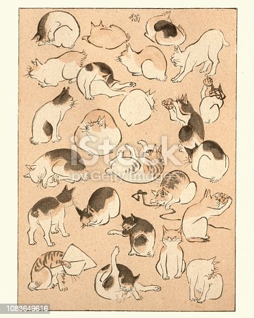 Vintage engraving of Art of Japan, Sketches of Cats by Hiroshige