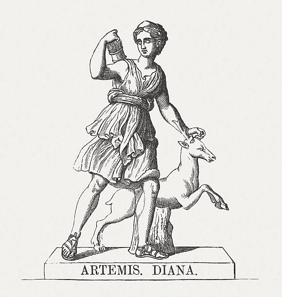 Artemis (Diana), Greek goddess of the Hunt, published in 1878 Artemis - Greek goddess of the Hunt. Woodcut engraving after a Roman copy of a Greek sculpture by Leochares in Louvre Museum, Paris (Diana of Versailles), published in 1878. artemis stock illustrations