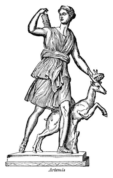 Artemis Artemis - Scanned 1882 Engraving artemis stock illustrations